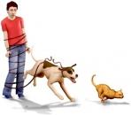 Artpic du jeu Animaux & Cie