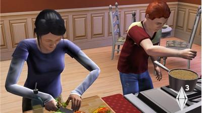 comment remplir frigo sims 3