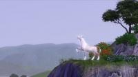 Vidéo du jeu Animaux & Cie